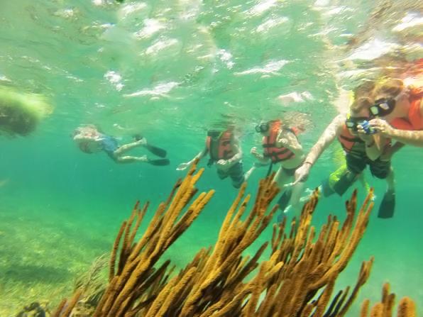 snorkel-02